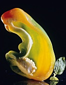 Cross Section of Green Bell Pepper
