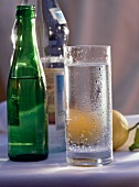 A Glass of Sparkling Water and Two Bottles