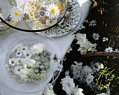 White Blossoms for Table Decoration