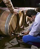 Barrel filling in the cellar of Chateau Langoa, Medoc, France