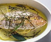 Red snapper with herbs & lemon in a baking dish