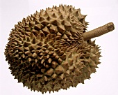 One Durian