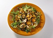 Mushroom Salad with Curly Endive
