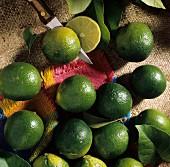 Zitrusfrüchte: Mehrere Limetten; eine Limette mit Messer