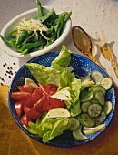 A Bowl of mixed raw Vegetables and a Bowl of sliced Green Pepper