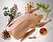 Warenkunde: Eine gerupfte Wildente mit Zutaten für Füllung