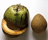Green Coconut Cut in Half with Nut Removed