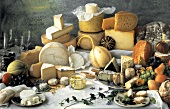 Large Assorted Cheese Still Life