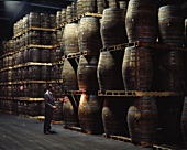 Fine whiskey is matured for 15 years at Midleton Distillery, Ireland