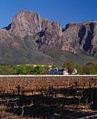Boschendal Winery; Franschhoek; Paarl and Stellenbosch; South Africa