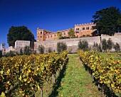 Castello di Brolio (im Besitz der Ricasoli), Chianti Classico