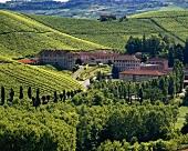 Gut Fontanafredda,ehemals Besitztum der Königsfamilie,Piemont