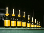 The nine different sizes of champagne bottle compared
