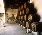Sherry-Bodega Barbadillo in Sanlucar de Barrameda nahe Jerez