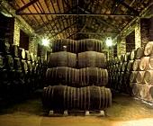 Fässer im Alvear-Weingut Monumental, Montilla, Andalusien