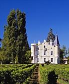 Delicate wines: Haut-Bergey vineyard, Pessac-Leognan, Bordeaux