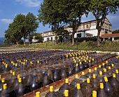 Wine maturing in the open air for one year, Mas Amiel, Maury AOC