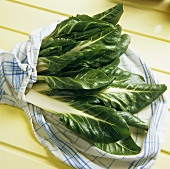 Chard Leaves in a Dish Towel