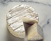 Camembert Wheel Sliced Once