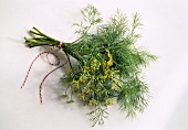 Dill with Dill Blossom Bouquet