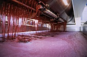 Pinot noir must running from wine press, Paso Roubles, California