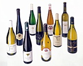 Selection of fine Chardonnay white wine bottles from Germany
