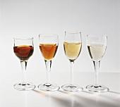 Vier Sherrysorten: Oloroso, Amontillado, Pale Cream, Fino