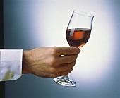 Glas mit Oloroso wird schräg gehalten: Test von Farbe & Aroma