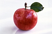 One Starking Apple with Leaf