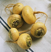 Several Teltower turnips lying on cloth