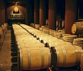 French oak barrels in Trapiche cellar, Argentina