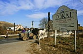 Sign and horse and carriage at entrance to Tokay, Hungary