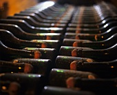 Storing sparkling wine bottles in a wine cellar in Champagne