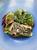 Jellied Goose Giblets on garden Salad