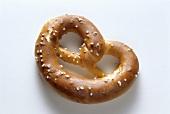 A single pretzel