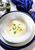 Turnip Cabbage Cream Soup with Truffle Oil in Soup Bowl