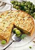 Gooseberry cake with almonds, a piece cut