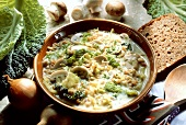 Savoy stew with cereal and button mushrooms in dish