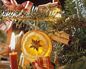 Ornament Made Out of Dried Orange Hanging From a Tree