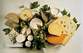 Assorted Cheese Still Life with Green Grapes