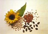 Kürbiskerne, Leinsamen & Sonnenblumenkerne neben Sonnenblume