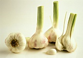 Three Whole Garlic Bulbs and One with Cloves