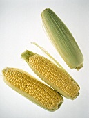 Two Ears of Peeled Corn on the Cob; One in the Husk