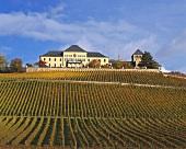 Schloss Johannisberg above vineyard of same name, Rheingau