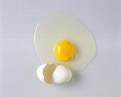 Ein aufgeschlagenes Ei mit weißer Schale