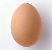 Single Brown Egg