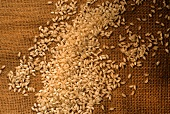 Still Life of Short-Grain Rice