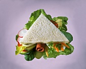 Triangular Sandwich on White Bread