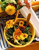 Fresh Herb Salad with Colorful Nasturtiums