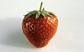 A Single Whole Strawberry